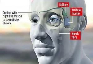 ماهیچههای مصنوعی پلیمری توانایی پلک زدن را باز میگردانند