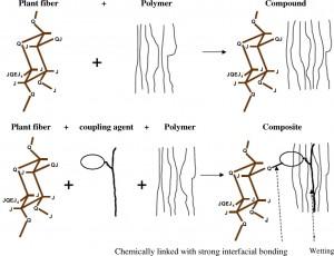 مکانیسم عملکرد عامل جفت کننده بین الیاف آبدوست و ماتریس آبگریز