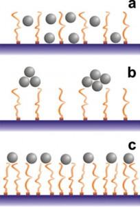 برهم کنش ذرات با برس پلیمری