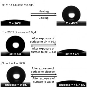 رفتار ترشدگی برس های پلیمری با قابلیت پاسخ به تغییرات دما، pH و غلظت گلوکز