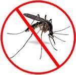 دفع حشرات با چسب لباس!