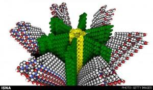 ساخت مواد خودترمیمکننده و عضلات مصنوعی با پلیمرهای هیبریدی