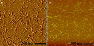 پژوهشگاه پلیمر و پتروشیمی ایران: ساخت پوششهای زیست سازگار بر پایهی نانوسلولز