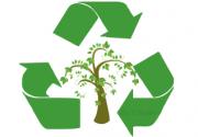 تولید پلاستیک بستهبندی قابل تجزیه در طبیعت